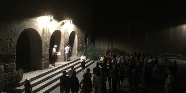Visites nocturnes al Miracle
